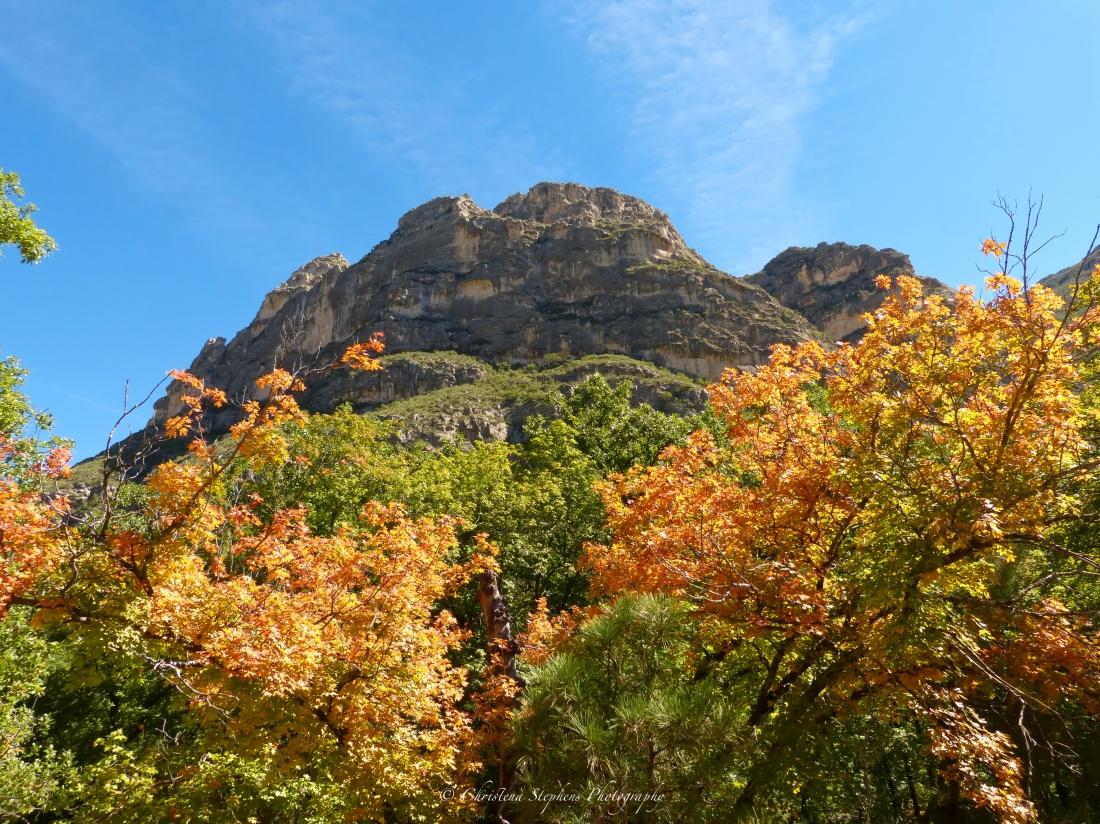 Guadalupe Mountains fall colors Texas