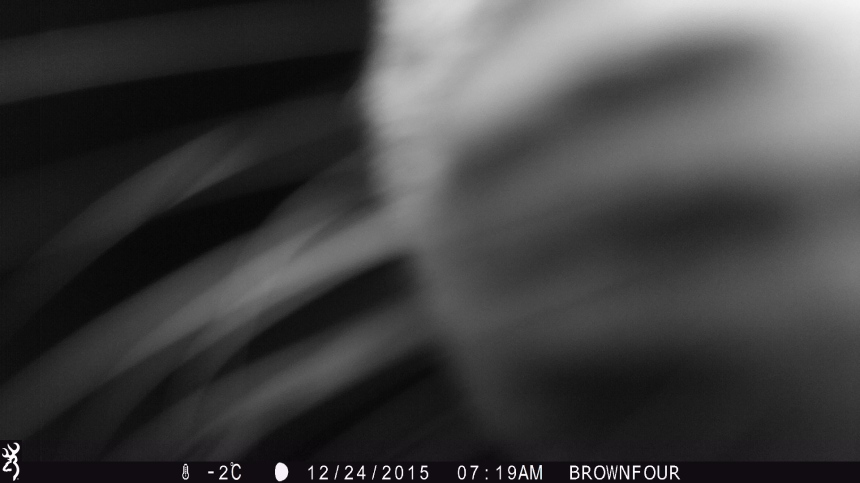 0719:122415:-2C:0000:BROWNFOUR:3