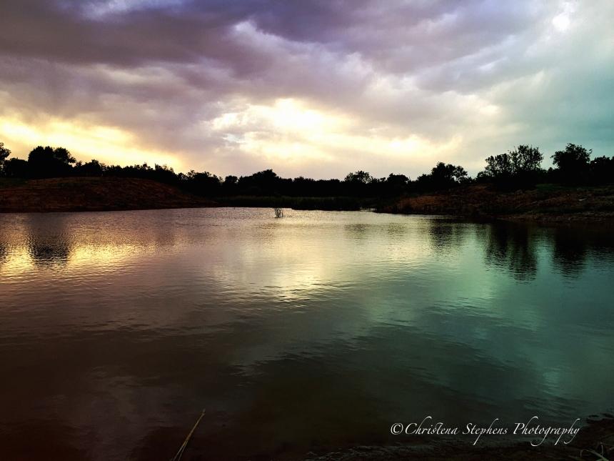 Beaver Pond Restored-imp